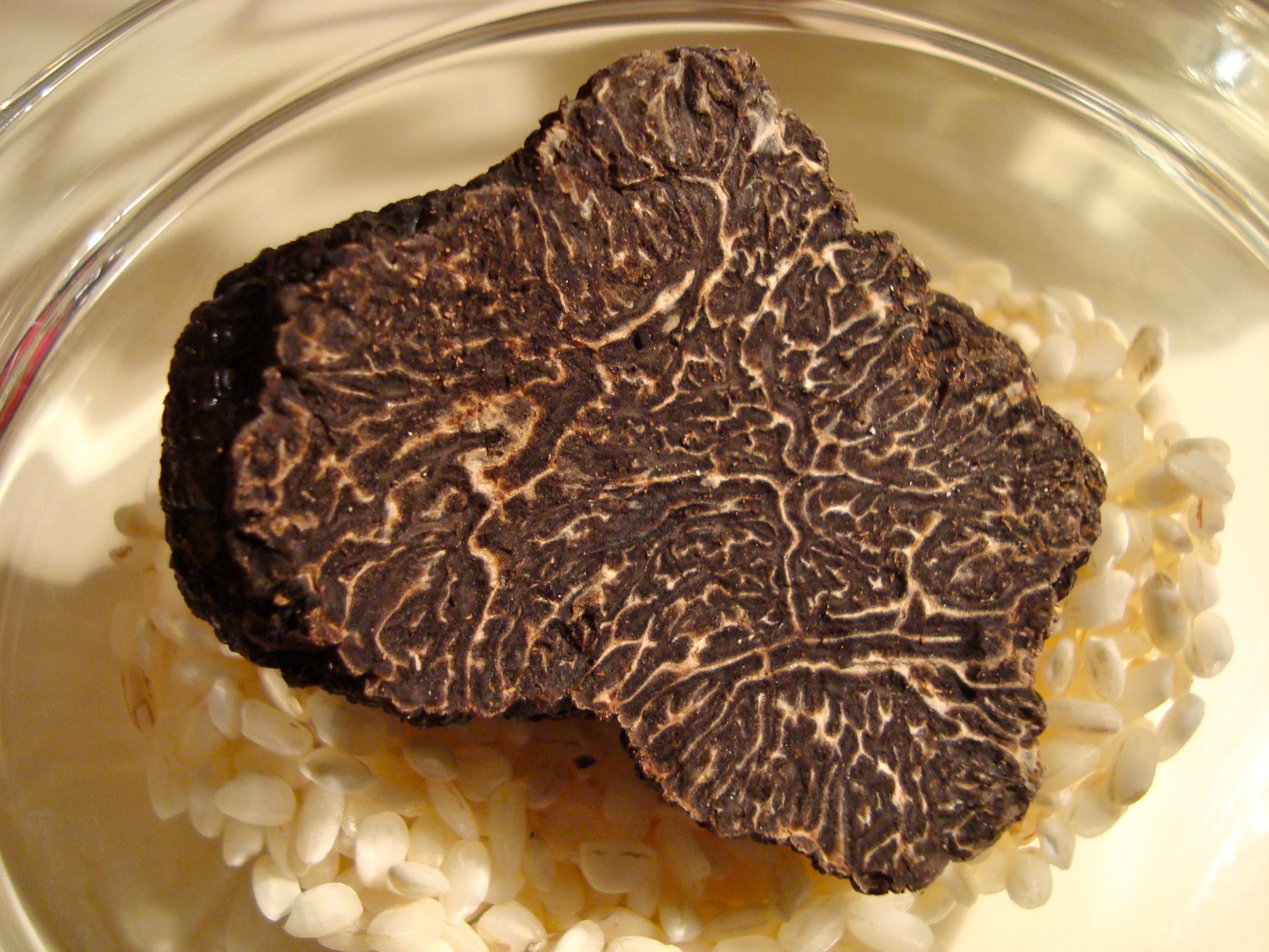 black truffle from Western Australia